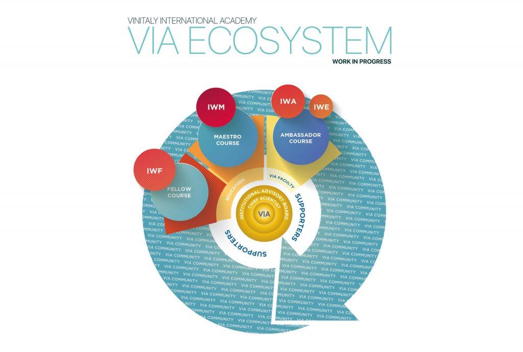 Vinitaly International Academy Ecosystem
